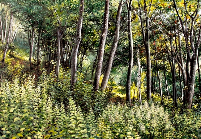 FORET DE MONTAGNE par HUGO H dans 09 Peinture & Dessins foret-de-montagne